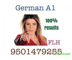German - dutch  classes in kapurthala call 9501479255
