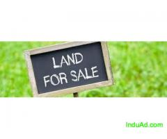 Residential Plot for Sale in Mudichur