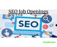 Boost your Career by getting SEO Internship in Pune