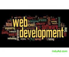 Website Development & SEO Services in Noida