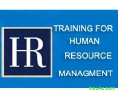 Professional Courses for HR at OSK