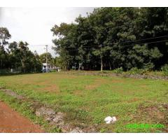 4,5,6 cent house plot in mulanthuruthy