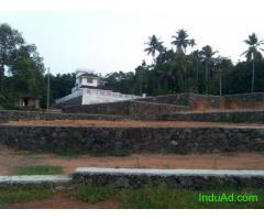 4,5,10 cents of house plots in Chottanikkara - Thalakkodu