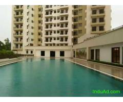 3BHK Flat for Rent at Hiland green...