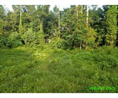 8 Cent of land in Mammala, Thiruvankulam for sale