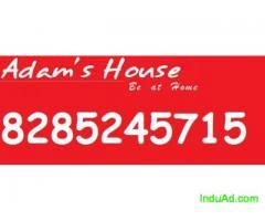 want PG juat Call 8285505507 at sector 48
