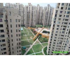 3 BHK Apartment Available For Rent In Unitech Fresco Sector 50 Gurugram