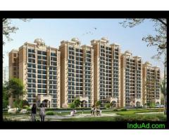 Omaxe Palace – Luxury 2/3 BHK Apartments