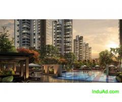 Puri Emarld Bay - Luxiurious Apartment  Gurgaon