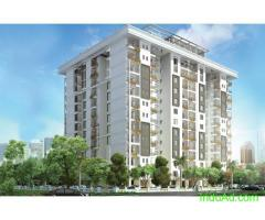 Tulsiani Luvnest – Located 400 meters from Shaheed Path