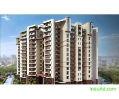 Tulsiani Urban Woods - 2 BHK Apartments in a very reasonable price